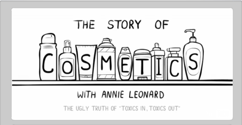Story of Cosmetics